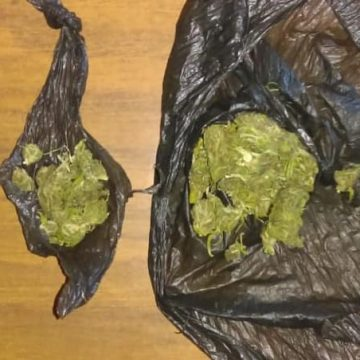 Asegura SSP a dos en posesión de hierba seca, al parecer marihuana