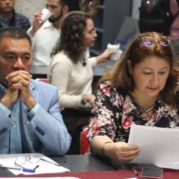 Trayectoria y honestidad son elementos que se valorarán en  la designación del Comisionado de Transparencia: Cristina Portillo